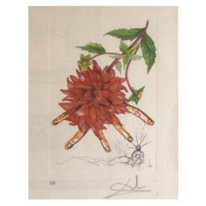Salvador Dali - Fleurs III