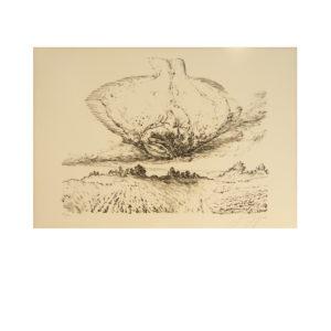 Günter Grass - Butt über Land
