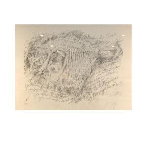 Günter Grass - Als vom Butt…